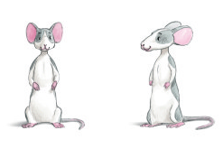 City_the_mouse_from_eumundi_and_friends_childrens_book_series