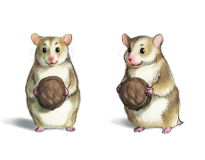 Hammy_from_eumundiandfriends_childrens_book_series