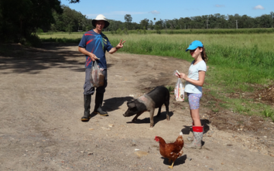 Farm Fun – The Story Behind the Story